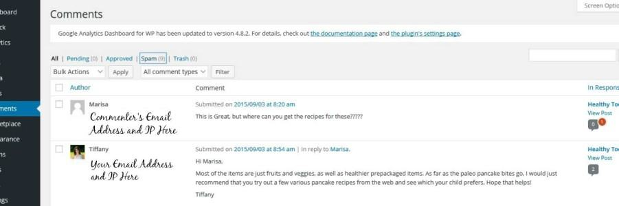 Confirmation You Have Replied and Approved Comment in WordPress